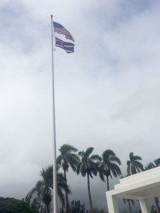 The Flags Are Flying